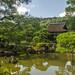 Togudo and Pond by www78