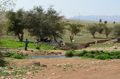 Al-Auja小城附近的貝多因游牧民族聚落。