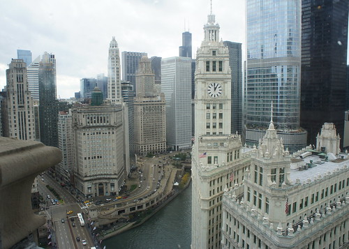 A View from the Top of the Trib
