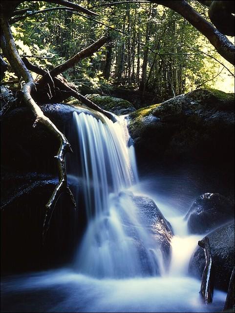 Le Garbet entre la cascade d'Ars et Aulus-Les-Bains (Ariège)