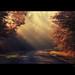 play of light / fényjáték by heizer.ildi