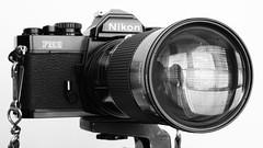 cameras & optics, digital camera, camera, single lens reflex camera, light, black-and-white, camera lens, reflex camera,