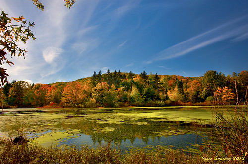 orangecounty newyork pond colors autumn fall sky