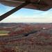 Fall Flight - October 20th, 2012