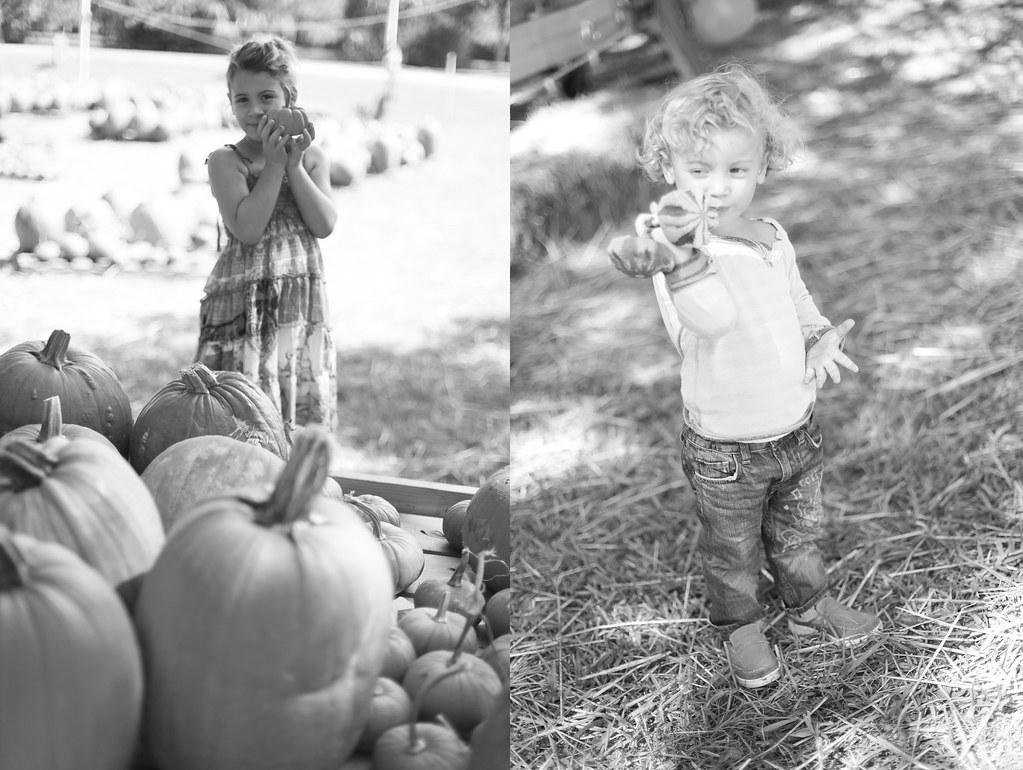 Pumpkins-26