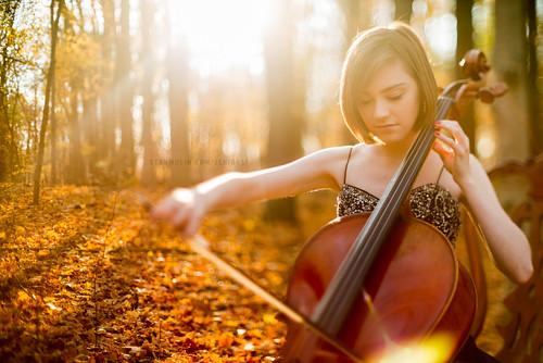 Rebecca '13 | Heartstrings