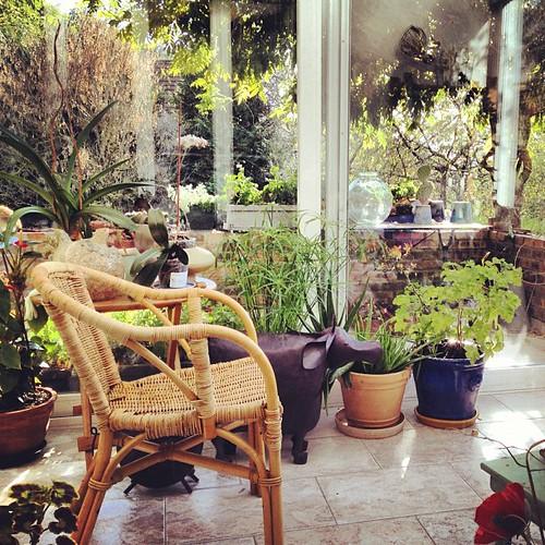 Giardino d'inverno by la casa a pois
