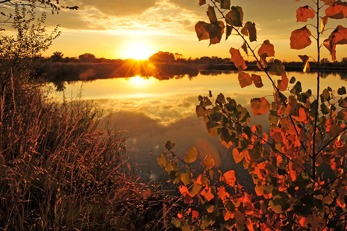 autumn sunset reflections gold cottonwood kansas wichita chisholmcreekpark ksccna7612