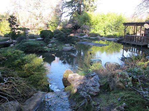 Hakone Japanese Gardens, Saratoga, CA, pond… IMG_2436