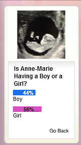 Boy or Girl Poll from Blog