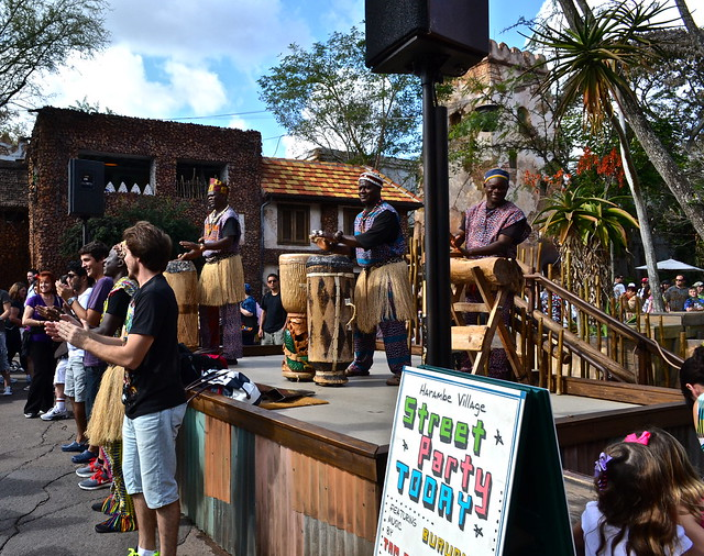 african dance party - animal kingdom