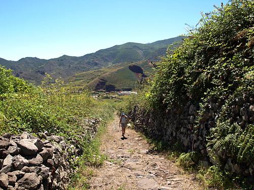 Camino Real, El Palmar to Teno Alto