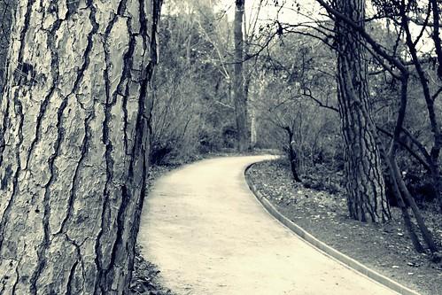 El camino puede ser largo; nunca eterno.