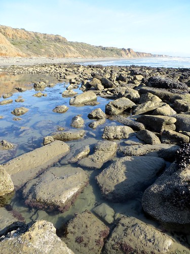 Tide pool in San Clemente