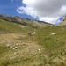 grandi valloni alpini