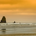 On the Beach: Cannon Beach Oregon by mharoldsewell
