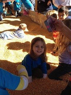 Volmer Farm with Preschool