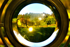 window(0.0), flower(0.0), single lens reflex camera(0.0), porthole(0.0), reflection(0.0), close-up(0.0), autumn(0.0), reflex camera(0.0), yellow(1.0), sunlight(1.0), light(1.0), macro photography(1.0), fisheye lens(1.0), green(1.0), circle(1.0),
