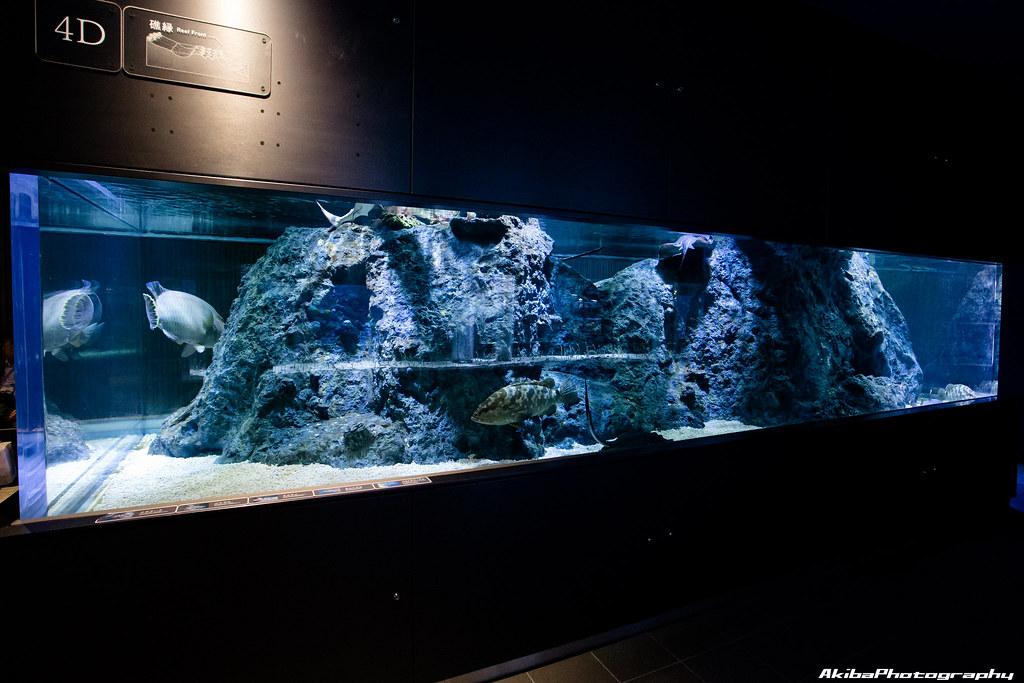 sumida-aquarium#22