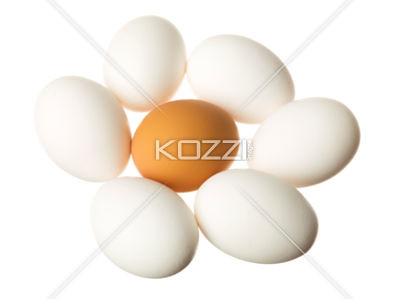 brown egg surrounded by white eggs on white