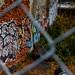 Photo Walk 2012-1277.jpg