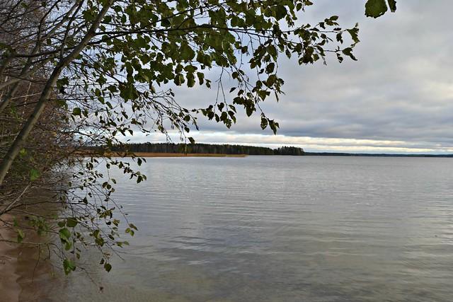 järvi2