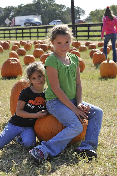 pumpkin patch_DSC1164_2012
