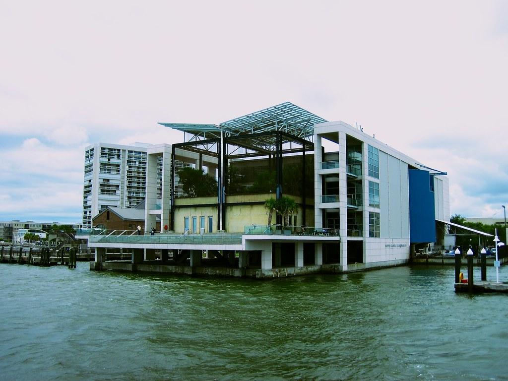 south carolina aquarium - a photo on Flickriver