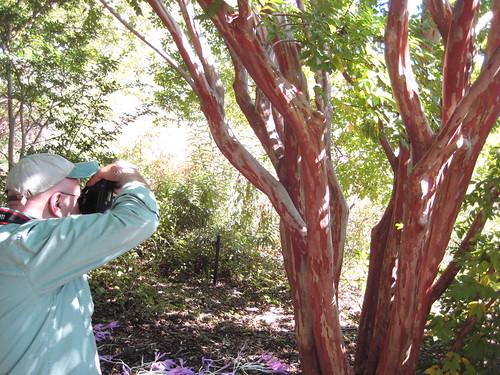 Ken Photographing Crape Myrtle