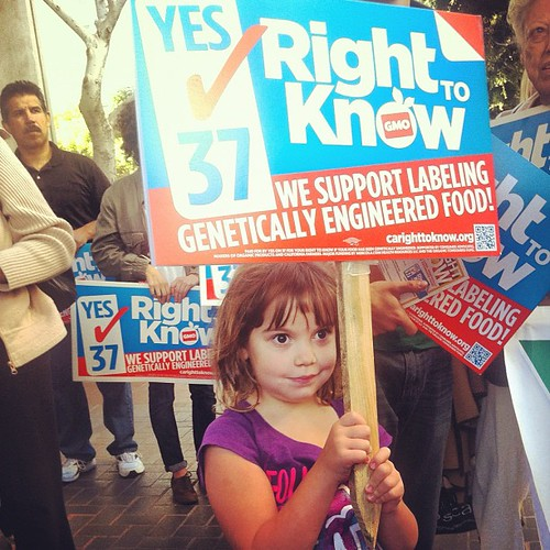 5-year-old Kate at the Yes on Prop 37 rally at City Hall in Los Angeles #homeschool #unschool #labelgmos