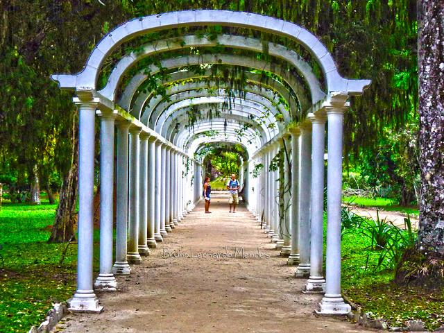fotos jardim botanico do rio de janeiro:Arcos do Jardim Botânico do Rio de Janeiro, RJ, Brasil
