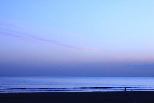 海と人と犬と。