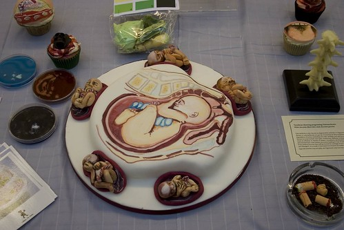 Anatomically correct cakes