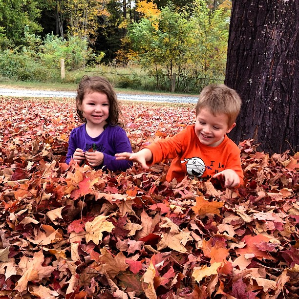 We had an awesome day with our niece and nephew. First we played in the leaves!
