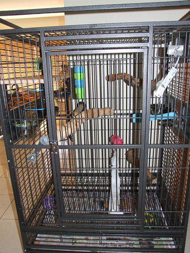 Sleeping cage for my Blue and Gold Macaw