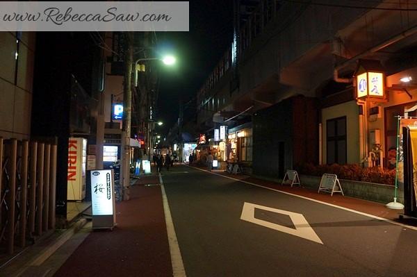 apan day 2 - Ueno, Tokyo station, akihabara-116