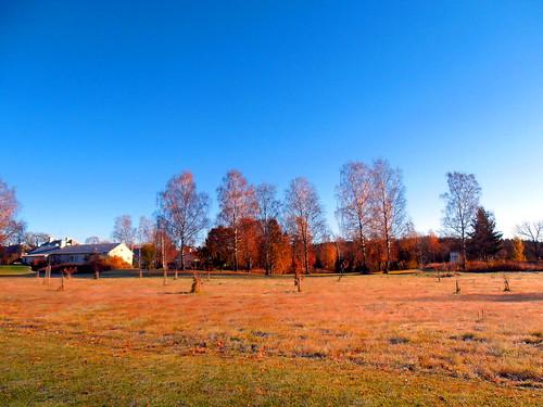 Ingesund Folkhögskolan