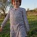 Italy & The Olive Farm