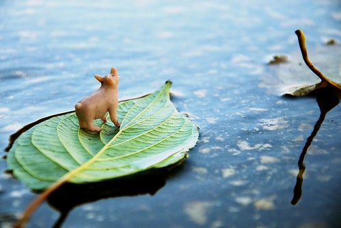 Floating away — Peace Pig 260