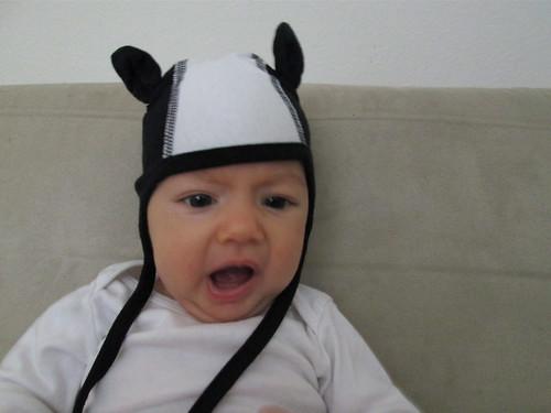 Skunk hat.