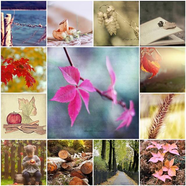 Mosaico otoño Llámalo... inspiración
