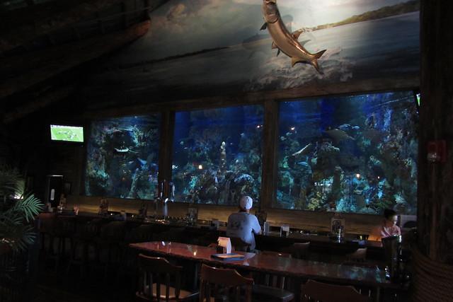 tropical fish aquarium at Bass Pro Shop, Council Bluffs ...