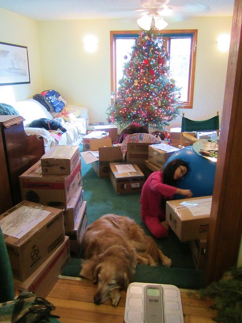 Dogs Resting While We Pack Books