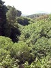 Kreta 2007-2 037