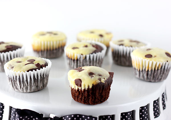 chocolate cream cheese cupcakes
