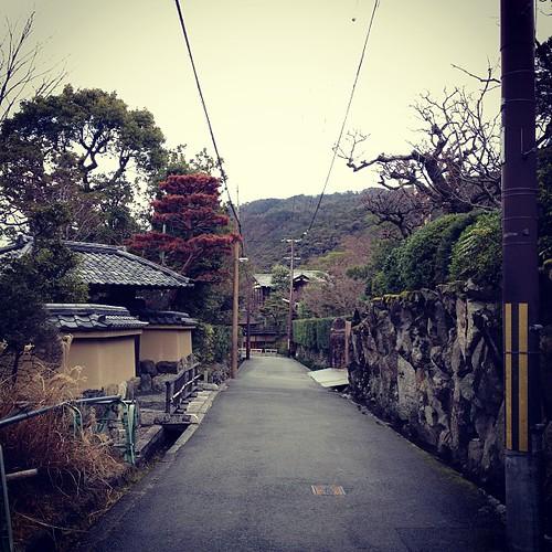 南禅寺に向かうこの道が好き