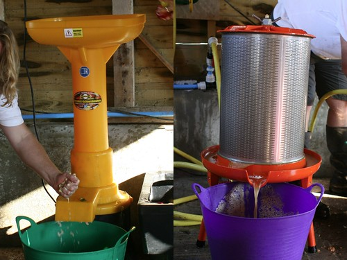 New school apple pulping and pressing