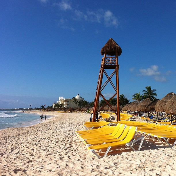 The morning #beach scene here at the #iberostar in the Mayan Riviera, #Mexico