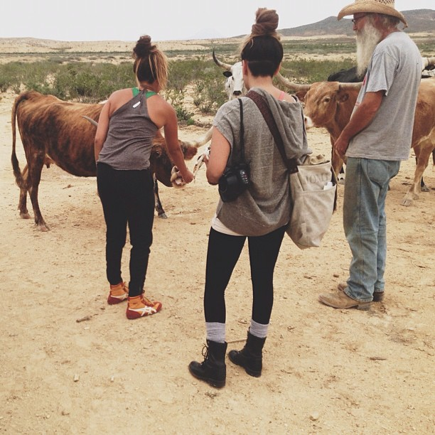 We made some new friends at #thefieldlab #johnwells #texaslonghorns #terlingua #headedtomarfa #marfaweddingfiesta #ssmrt #offthegrid #texas @thepinpointmethod