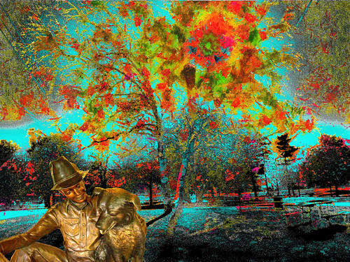 rare flowering tree bloom fall color man dog twinkle new england hampshire autumn photoshop flickr google bing yahoo image stumbleupon facebook getty photographers direct national geographic montage manipulation real look it up daum interesting creative surreal avant guarde pinterest